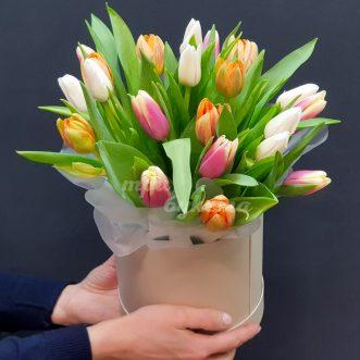 Разноцветные тюльпаны в коробке