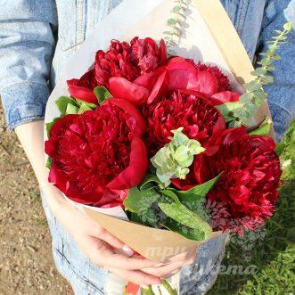 5-krasnyh-pionov-red-sharm